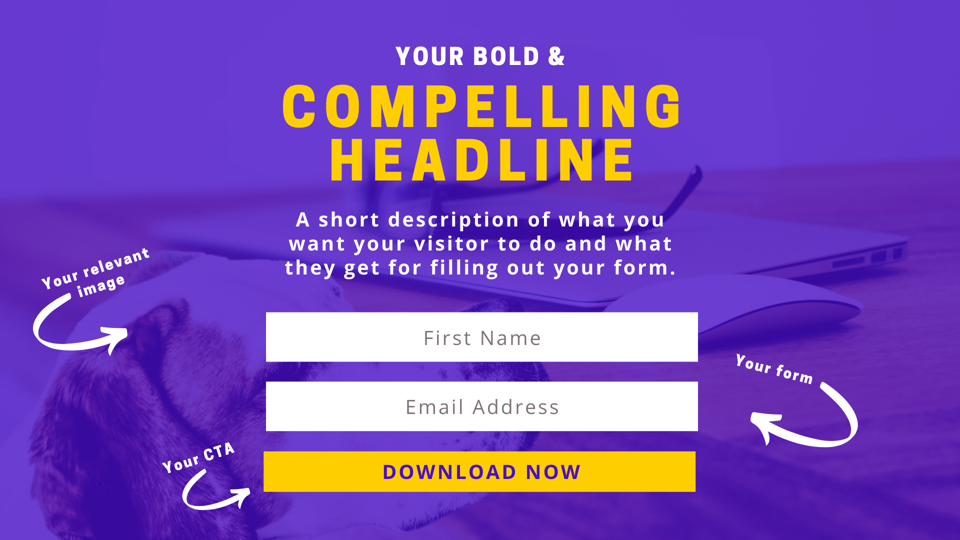example of above the fold offer on a landing page